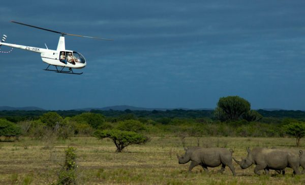 Is this the Greatest Safari in the World?